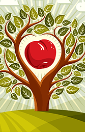 Экологически чистые яблоки