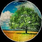 icon motive 003 - Таро прогноз - Путь к цели